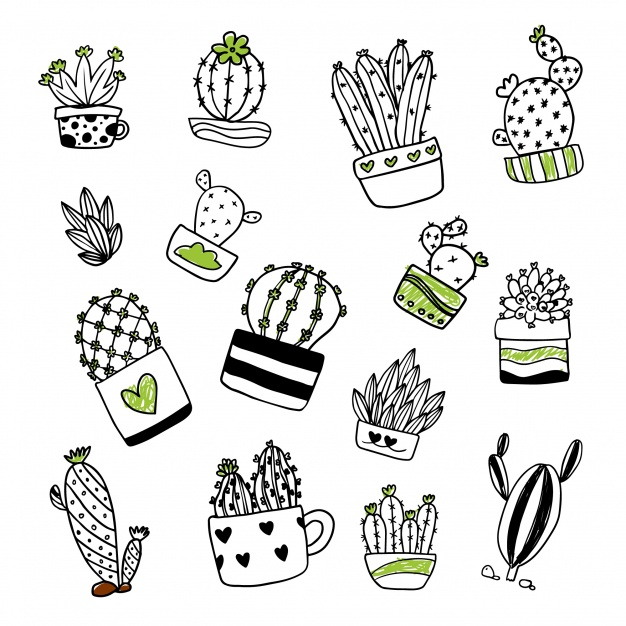 cactus-illustration-collection_1096-280